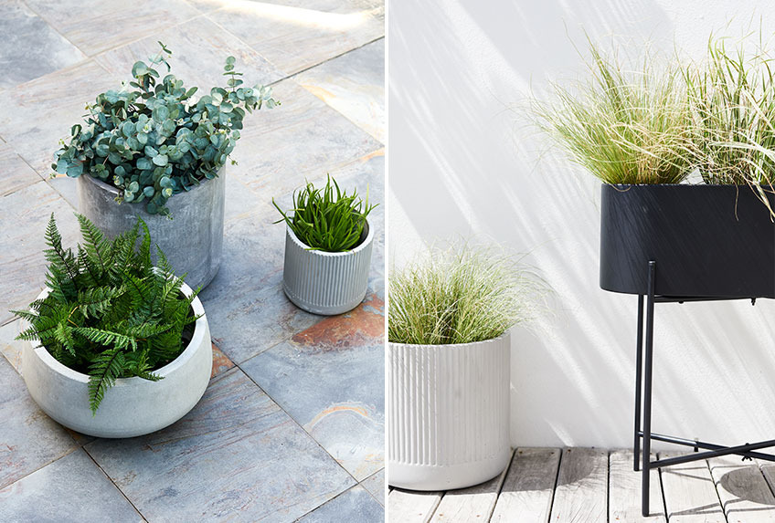 Large garden pots and tall planter on a patio